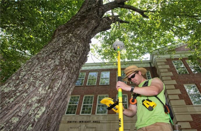 Arborist Consultations-Corpus Christi Tree Trimming and Stump Grinding Services-We Offer Tree Trimming Services, Tree Removal, Tree Pruning, Tree Cutting, Residential and Commercial Tree Trimming Services, Storm Damage, Emergency Tree Removal, Land Clearing, Tree Companies, Tree Care Service, Stump Grinding, and we're the Best Tree Trimming Company Near You Guaranteed!