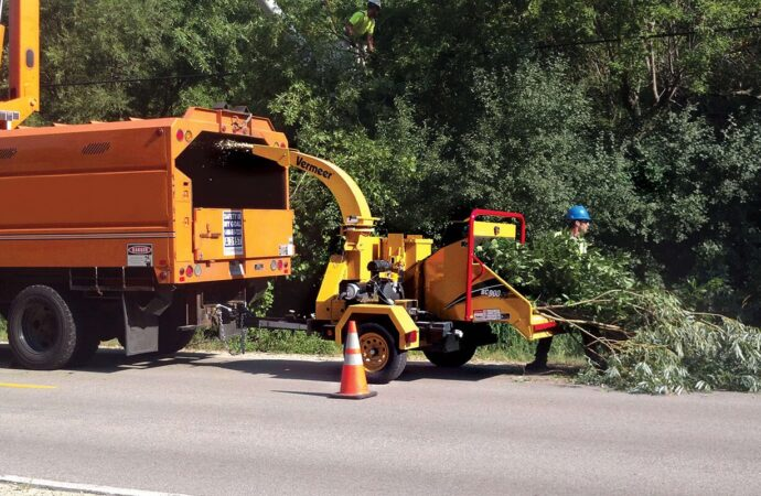 Commercial Tree Services-Corpus Christi Tree Trimming and Stump Grinding Services-We Offer Tree Trimming Services, Tree Removal, Tree Pruning, Tree Cutting, Residential and Commercial Tree Trimming Services, Storm Damage, Emergency Tree Removal, Land Clearing, Tree Companies, Tree Care Service, Stump Grinding, and we're the Best Tree Trimming Company Near You Guaranteed!