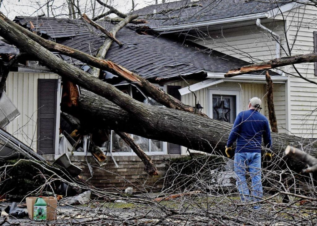Storm Damage-Corpus Christi Tree Trimming and Stump Grinding Services-We Offer Tree Trimming Services, Tree Removal, Tree Pruning, Tree Cutting, Residential and Commercial Tree Trimming Services, Storm Damage, Emergency Tree Removal, Land Clearing, Tree Companies, Tree Care Service, Stump Grinding, and we're the Best Tree Trimming Company Near You Guaranteed!