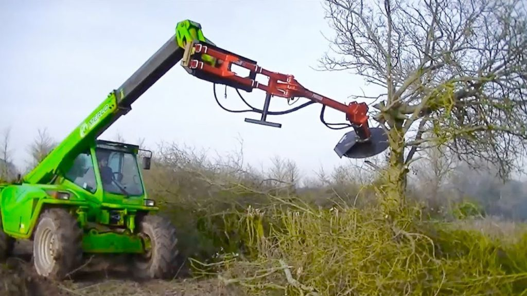 Tree Trimming-Corpus Christi Tree Trimming and Stump Grinding Services-We Offer Tree Trimming Services, Tree Removal, Tree Pruning, Tree Cutting, Residential and Commercial Tree Trimming Services, Storm Damage, Emergency Tree Removal, Land Clearing, Tree Companies, Tree Care Service, Stump Grinding, and we're the Best Tree Trimming Company Near You Guaranteed!