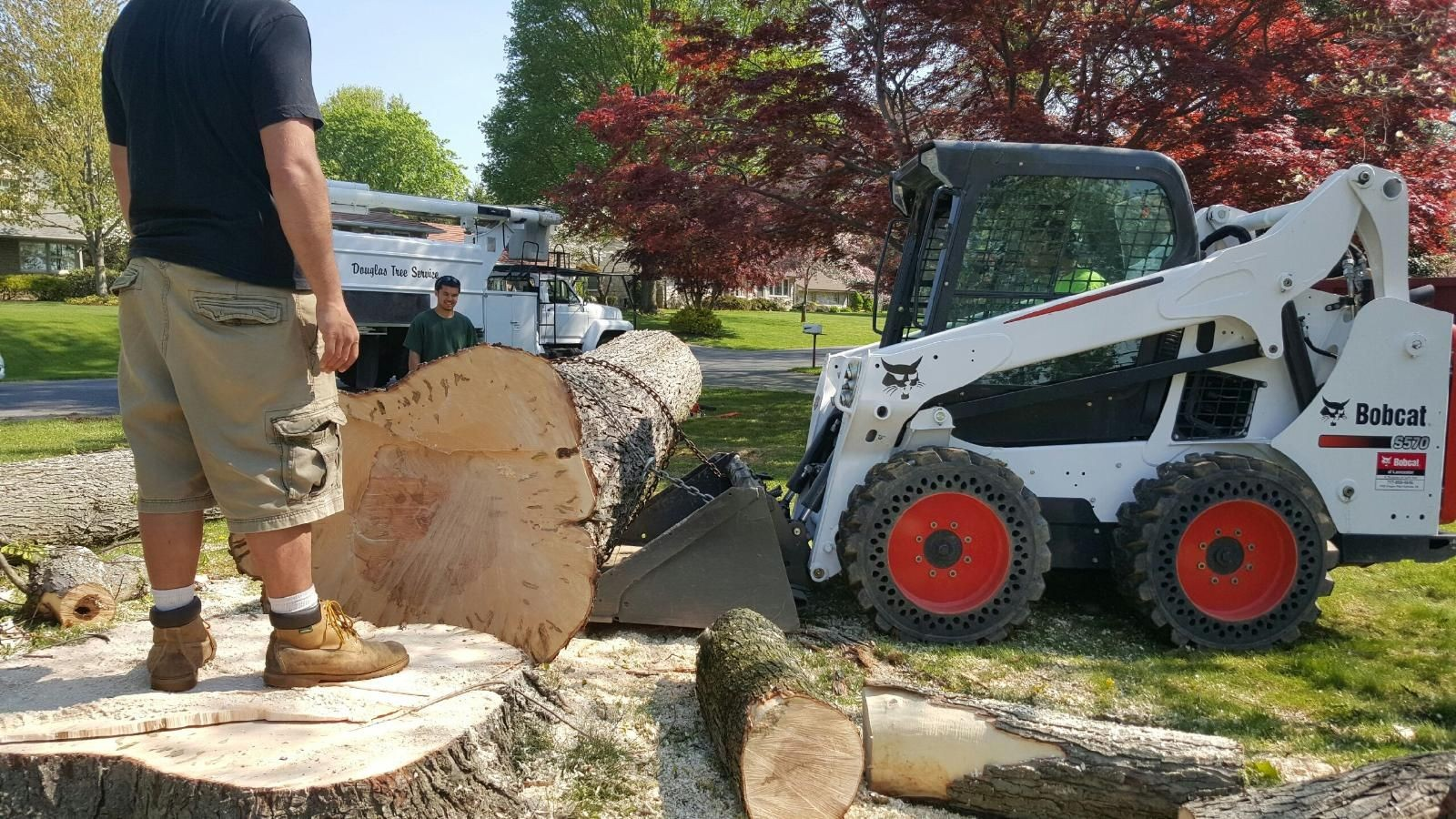 Mustang Island-Corpus Christi Tree Trimming and Stump Grinding Services-We Offer Tree Trimming Services, Tree Removal, Tree Pruning, Tree Cutting, Residential and Commercial Tree Trimming Services, Storm Damage, Emergency Tree Removal, Land Clearing, Tree Companies, Tree Care Service, Stump Grinding, and we're the Best Tree Trimming Company Near You Guaranteed!