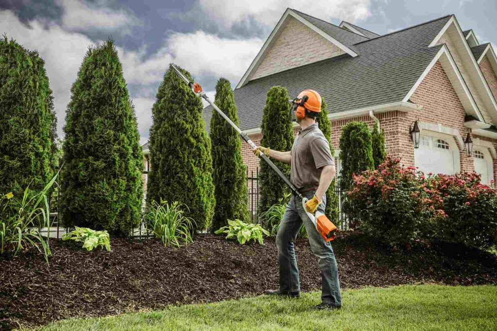Portland-Corpus Christi Tree Trimming and Stump Grinding Services-We Offer Tree Trimming Services, Tree Removal, Tree Pruning, Tree Cutting, Residential and Commercial Tree Trimming Services, Storm Damage, Emergency Tree Removal, Land Clearing, Tree Companies, Tree Care Service, Stump Grinding, and we're the Best Tree Trimming Company Near You Guaranteed!
